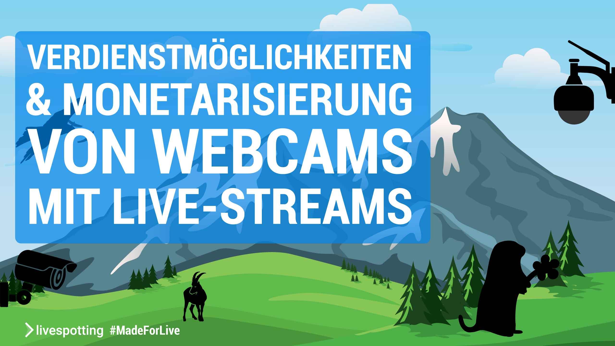 Wie kann ich Geld mit einer Webcam verdienen?