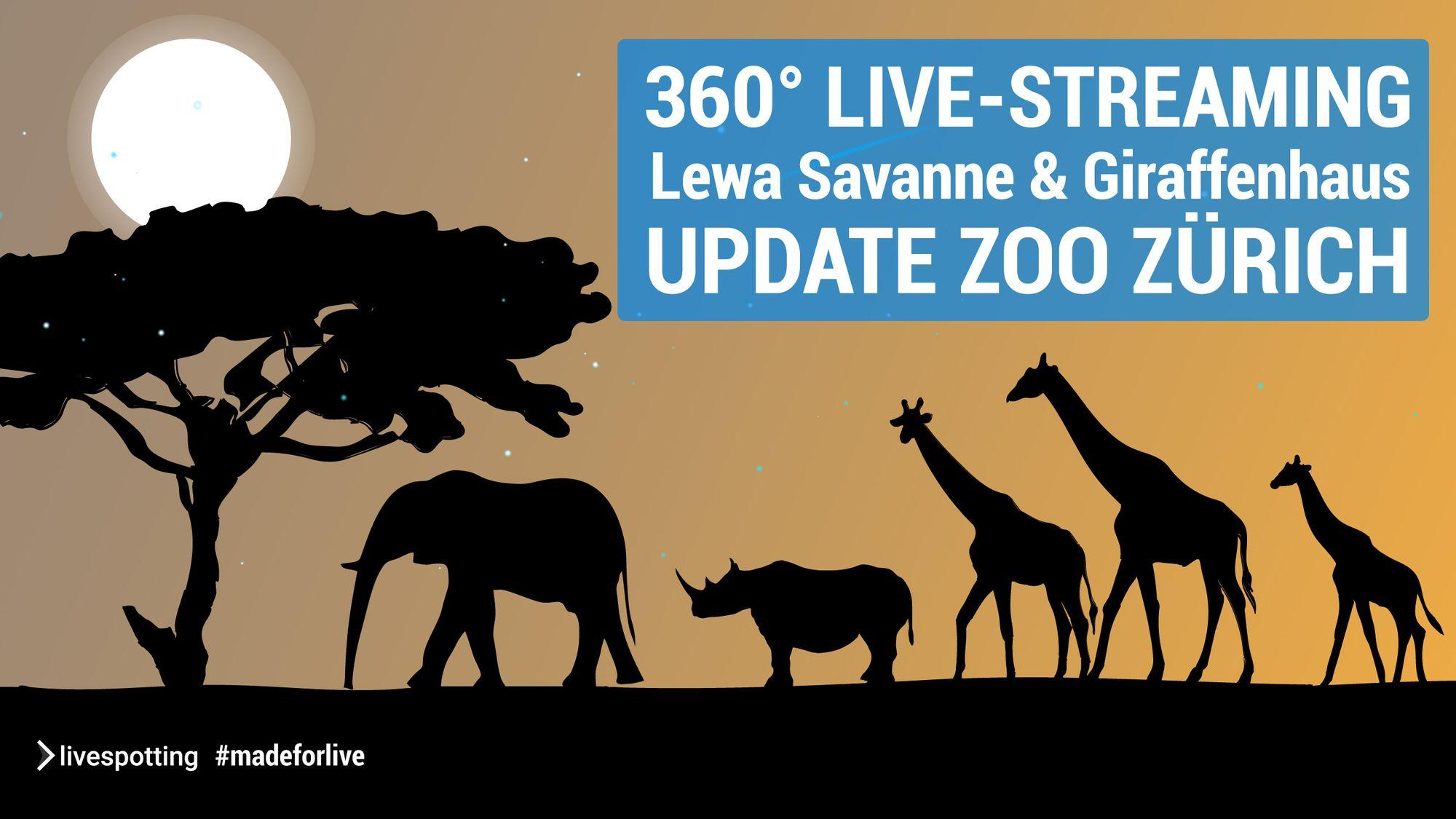 Wir betreiben die Live-Streams und Webcams für den Zoo Zürich.